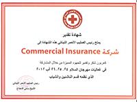 Red Cross - Token of Appreciation
